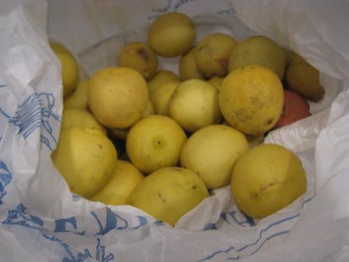 Bag-o-Limes