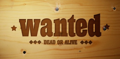 wanted one logo